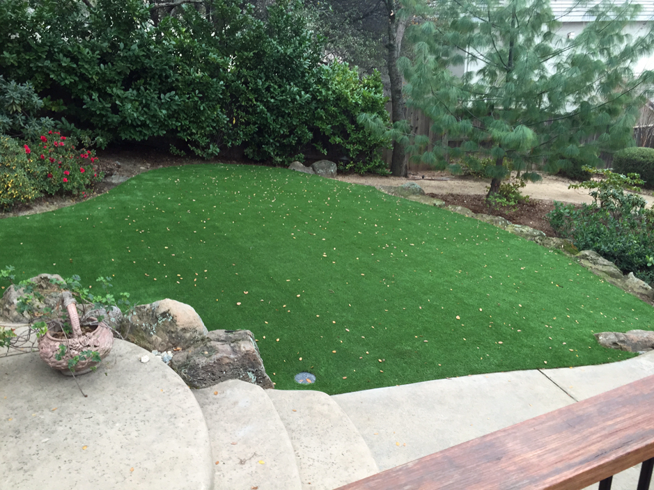 Artificial Grass Carpet Central Heights Midland City, Arizona Paver Patio,  Backyard Garden Ideas