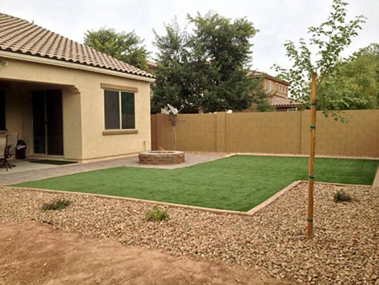 Artificial Grass Photos: Artificial Grass Paradise Valley, Arizona Lawn And Garden, Small Backyard Ideas
