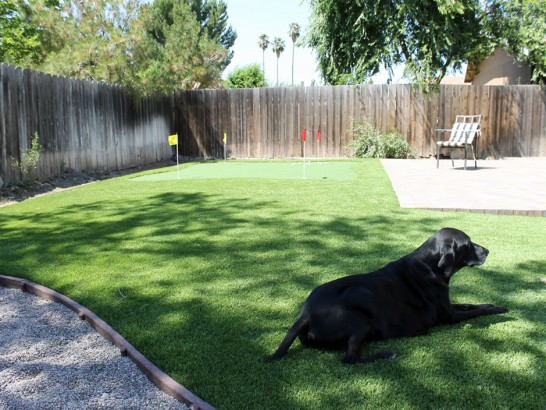 Artificial Grass Photos: Artificial Lawn Kearny, Arizona Putting Green Carpet, Small Backyard Ideas