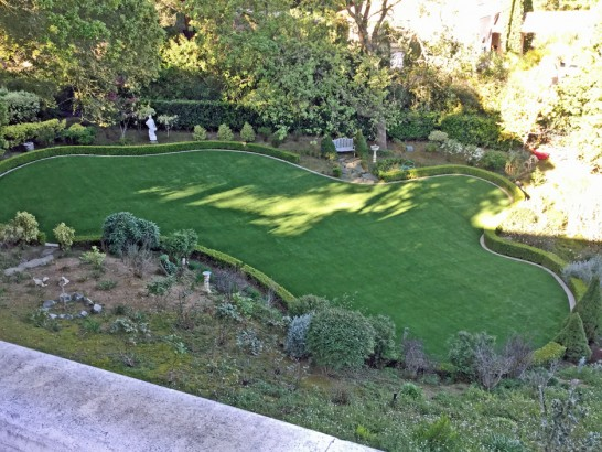 Artificial Grass Photos: Artificial Turf Star Valley, Arizona Pictures Of Dogs, Backyard Landscaping Ideas