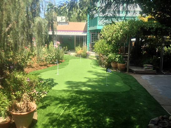 Artificial Grass Photos: Best Artificial Grass Bagdad, Arizona Lawn And Garden