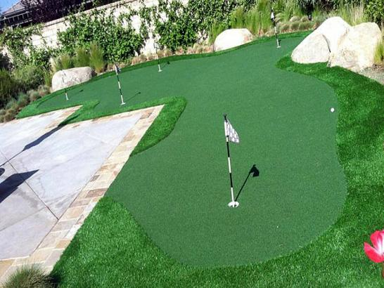 Artificial Grass Photos: Fake Lawn Palominas, Arizona Artificial Putting Greens, Backyard Designs
