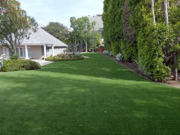 Artificial Grass Photos: Fake Turf Golden Valley, Arizona Landscape Design, Small Front Yard Landscaping