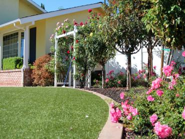 Artificial Grass Photos: Faux Grass Jakes Corner, Arizona Lawns, Small Front Yard Landscaping