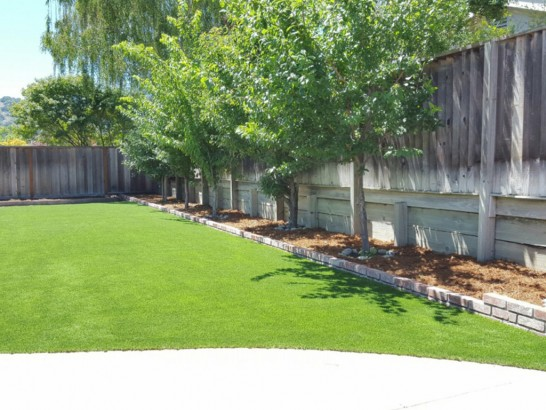 Artificial Grass Photos: Grass Carpet Casas Adobes, Arizona Paver Patio, Commercial Landscape