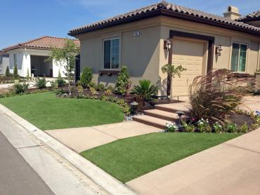 Artificial Grass Photos: Grass Carpet Catalina Foothills, Arizona Gardeners, Small Front Yard Landscaping