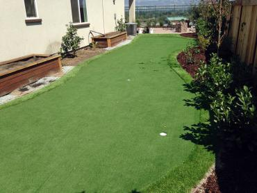 Artificial Grass Photos: Grass Carpet Ehrenberg, Arizona Lawn And Landscape, Backyard
