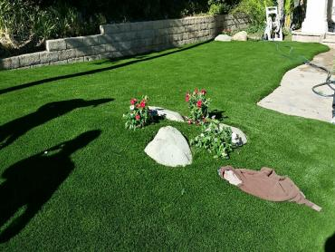 Artificial Grass Photos: Grass Installation Florence, Arizona Design Ideas, Front Yard Design