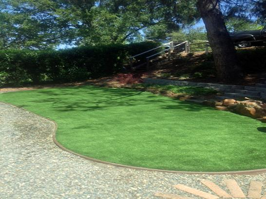 Artificial Grass Photos: Green Lawn Green Valley, Arizona Roof Top, Backyard Makeover