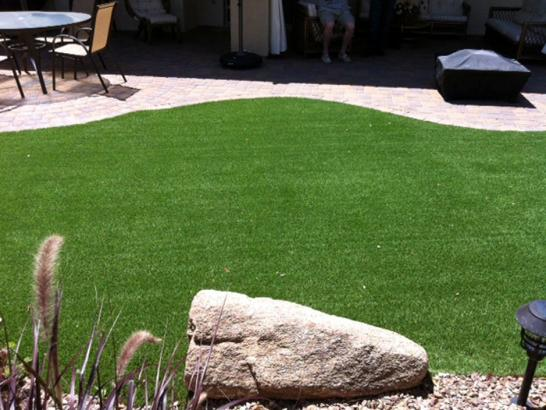 Artificial Grass Photos: How To Install Artificial Grass Prescott, Arizona Indoor Dog Park, Backyard Garden Ideas