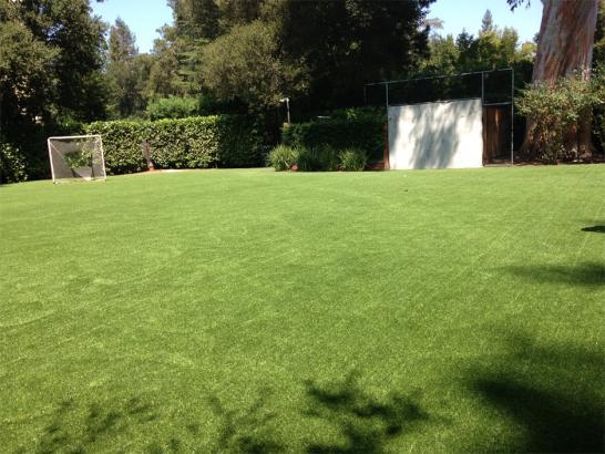 Artificial Grass Photos: Installing Artificial Grass Oracle, Arizona Bocce Ball Court, Backyard