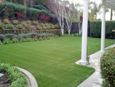 Artificial Grass Photos: Lawn Services Sierra Vista, Arizona City Landscape, Backyard Landscape Ideas