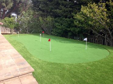 Artificial Grass Photos: Outdoor Carpet Spring Valley, Arizona Golf Green, Backyard Ideas