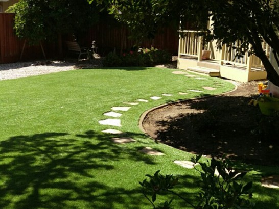 Plastic Grass Cornville, Arizona Lawn And Garden, Backyard Landscaping artificial grass