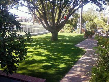 Artificial Grass Photos: Plastic Grass Truxton, Arizona Garden Ideas