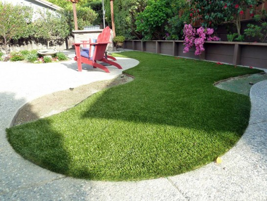Artificial Grass Photos: Synthetic Grass Cost Payson, Arizona Indoor Dog Park, Small Backyard Ideas
