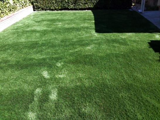Artificial Grass Photos: Synthetic Grass Cost Tucson, Arizona Pet Grass, Backyard Landscaping
