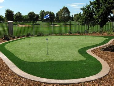 Synthetic Lawn Mesa, Arizona How To Build A Putting Green, Backyard Designs artificial grass