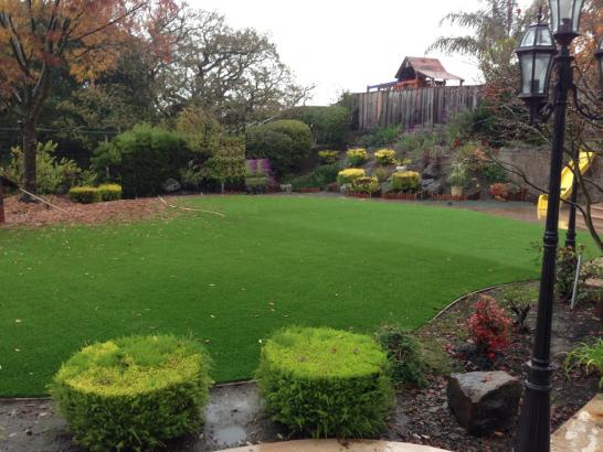 Synthetic Lawn Sedona, Arizona Gardeners, Backyard Designs artificial grass