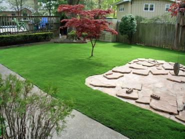Artificial Grass Photos: Synthetic Turf Supplier Tees Toh, Arizona Roof Top, Backyard Landscape Ideas