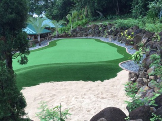 Synthetic Turf Supplier Verde Village, Arizona Indoor Putting Greens artificial grass