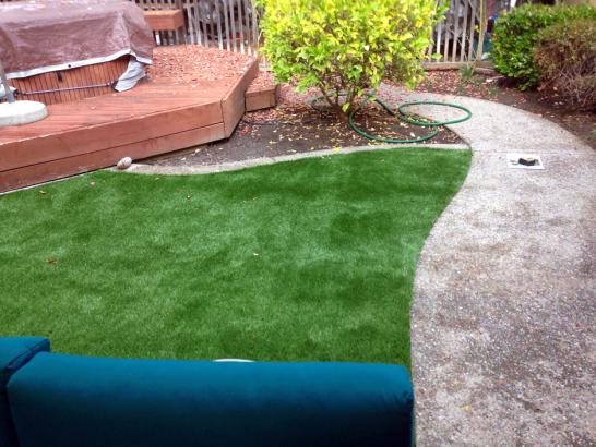 Artificial Grass Photos: Synthetic Turf Valle, Arizona Backyard Deck Ideas, Backyard