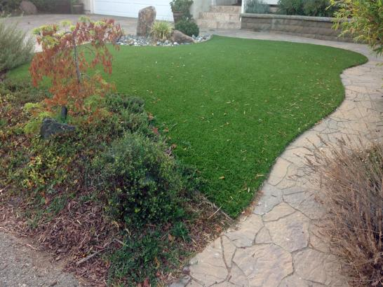 Artificial Grass Photos: Turf Grass Tombstone, Arizona Paver Patio, Backyards