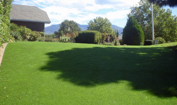 Artificial Grass for Commercial Applications in Mesa, Arizona